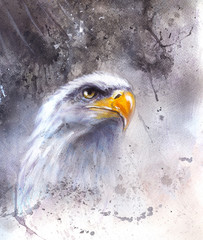 beautiful painting of  eagle on an abstract background