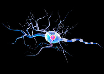 3d illustration of nerve cell isolated on black, concept for Neurological Diseases, tumors and brain surgery.