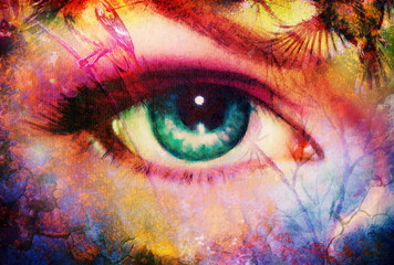 beautiful illustration women eye , with birds on multicolor background eye contact