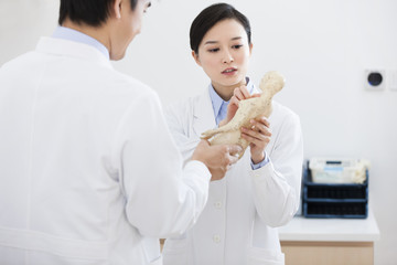 Doctors studying anatomical model