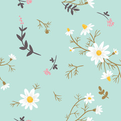 Chamomile. floral seamless pattern