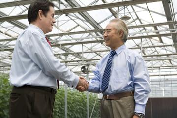 Businessmen in modern farm