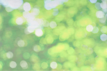 Green nature bokeh on canvas background, pastel background
