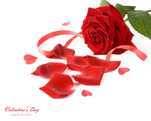 Beautiful roses bunch and hearts. Valentine's day concept. Wedding concept