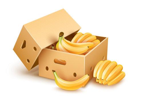 Cardboard box with yellow banana fruits inside. Eps10 vector
