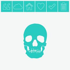 Skull vector icon.