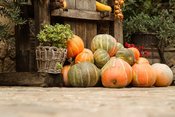Ripe pumpkins stacked