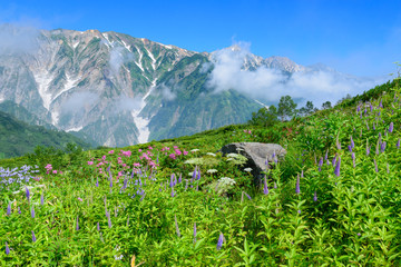 Shirouma mountains at Northern Alps in Japan