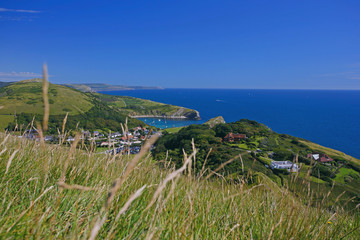 Fototapete - Dorset, The Jurassic Coast, Isle of Purbeck, Lulworth Cove