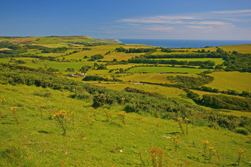 Fototapete - Dorset, The Jurassic Coast, Isle of Purbeck, White Ways View Point
