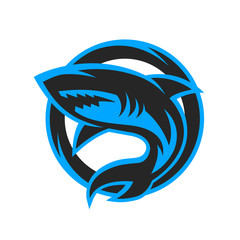 Shark sport logo, emblem.