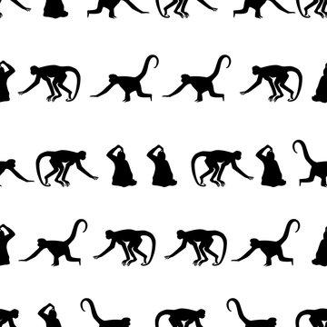 monkey black shadows silhouette in lines pattern eps10