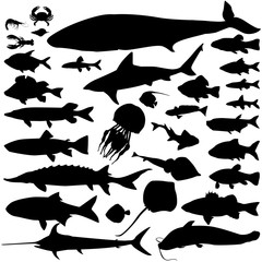 River and sea fish silhouette set. Marine fish and mammals. ocean seafood collection