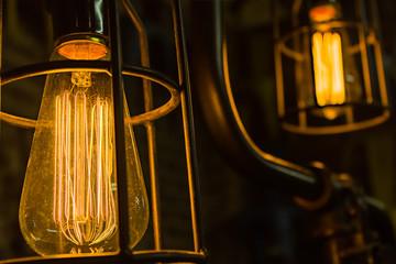 Antique Edison Light Bulbs