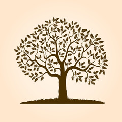 Brown Oak Tree. Vector Illustration.