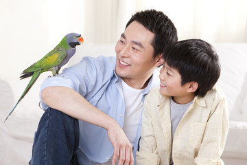 Father and son playing with a pet parrot