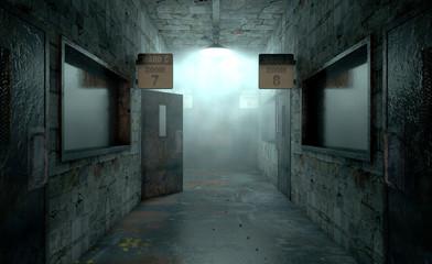 Mental Asylum Haunted Wall mural