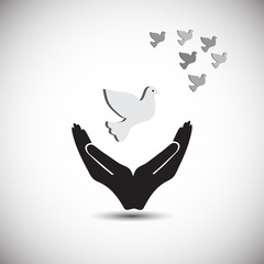 Concept of peace and freedom, also represents protecting peace, freedom, symbol of hand with flying pigeon
