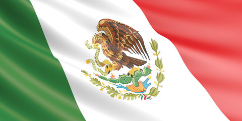 Flag of Mexico waving in the wind.