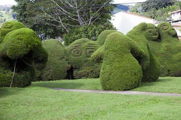 The Francisco Alvardo Park Zarcero, Costa Rica