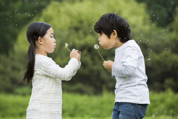 Boy and girl blowing dandelion
