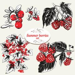 Сurrants, raspberries, blackberries