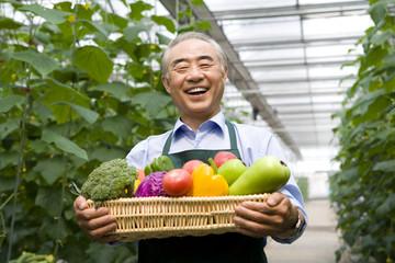 Farmer holding vegetables in modern farm