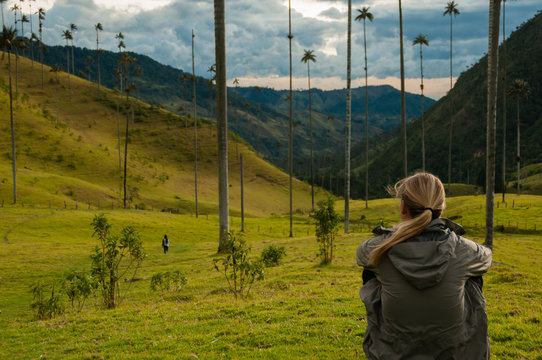 Girl with grey jacket sitting on green grass watching tall palm trees in Cocora Valley