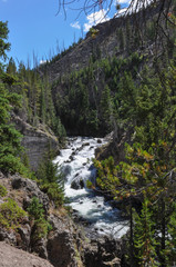Fototapete - Waterfall in Yellowstone National Park, Wyoming, USA