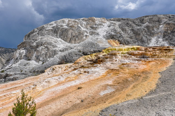 Fototapete - Mammoth Terraces, Yellowstone National Park, Wyoming, USA