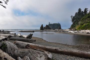 Wall Mural - Pacific Coast, Olympic National Park, Washington, USA
