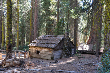 Fototapete - Sequoia National Park small house, California, USA
