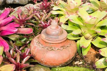 Wall Mural - Pot in the garden
