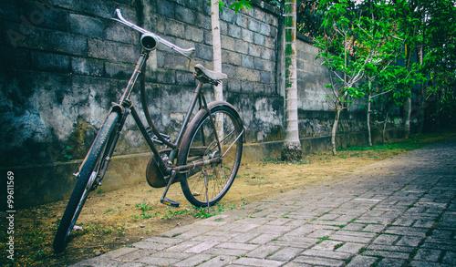 vintage fahrrad vor einer mauer mit palmen stockfotos und lizenzfreie bilder auf. Black Bedroom Furniture Sets. Home Design Ideas