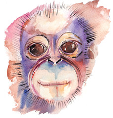 the watercolor monkey jungle animal isolated on the white background