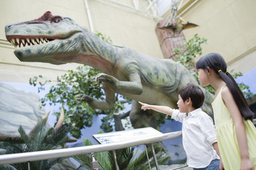 Children in museum of natural history