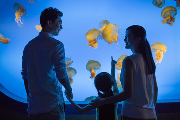 Young family in aquarium