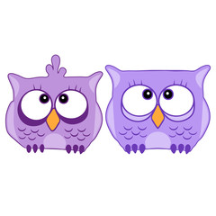 Funny cute animal, owl. Owl vector illustration eps 10