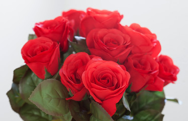 Red roses as Valentine gift