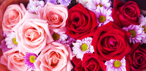 Beautiful rose wall made of colorful paper, valentines day backg