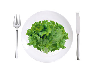 fresh lettuce on white plate, fork and knife isolated on white