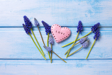 Blue  muscaries  flowers and decorative  pink heart on blue pain