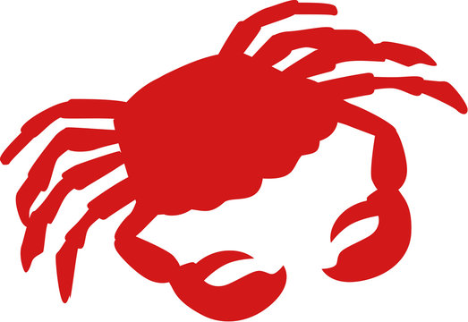 Silhouette of a crab