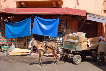Morocco, a cart with a donkey, unloading of goods