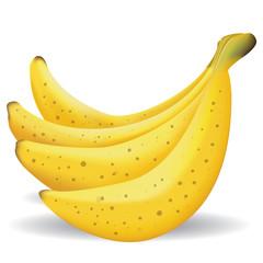 Bananas Fruit Illustration
