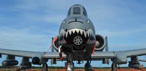 Wall Mural - A-10 Warthog Attack Jet