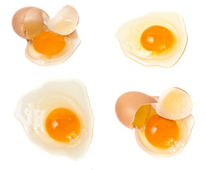 Set a broken raw egg on a white background