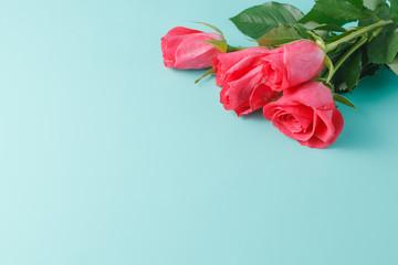 Red roses aquamarine background