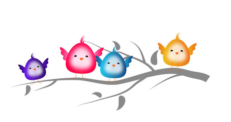 Colorful small cute birds sitting on twig of tree