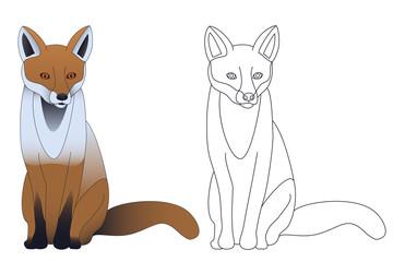 Fuchs Illustration
